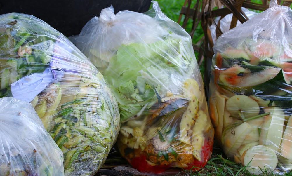 פסולת אורגנית